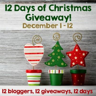 Twelve Days of Christmas Crochet Blog Giveaway